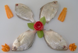 Paiya / Silver Perch / Charbet / Prachil